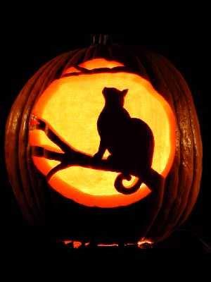 cat pumpkin ideas 700 free last minute halloween pumpkin carving templates and ideas digsdigs