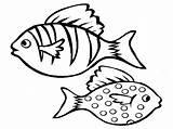 Fish Coloring Pages Aquarium Realistic Printable Print Drawing Bass Colouring Cute Cod Saltwater Boat Getcolorings Tropical Colorings Realisticcoloringpages Via Getdrawings sketch template
