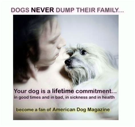 dogs  family quotes quotesgram
