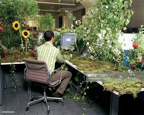 Office Desk Flowers by Office Worker At Desk Covered In Plants And Flowers Rear