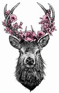 pink deer transparent Stag transparent deer trans-par-en-t •