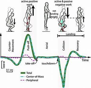Total Mechanical Power Vs  Time For Vertical Jumping And