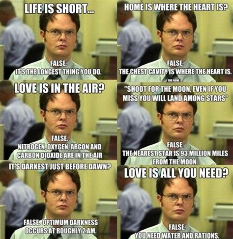 Dwight Schrute Memes - 29 best the office memes images on pinterest funny stuff ha ha and the office