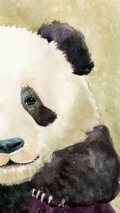 cute panda wallpapers  iphone