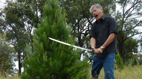 christmas trees canberra kengs christmas farm samurai