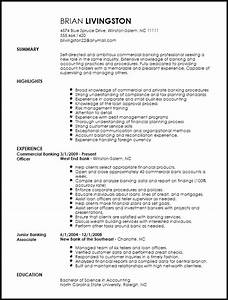 Resume Sample For Banking Professionals Free Professional Banking Resume Template Resume Now