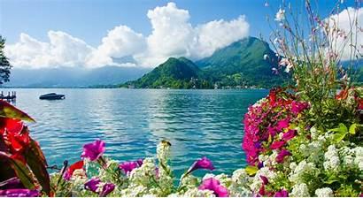 Scenery Flowers Sea Mountains