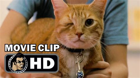 Gifted Movie Clip  One Eyed Cat (2017) Chris Evans Drama