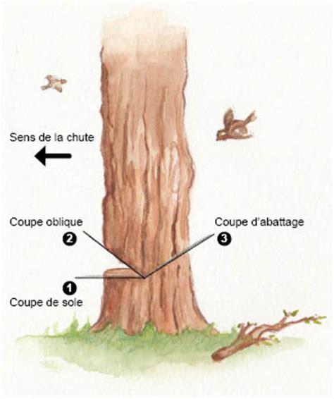 peut  couper  arbre dans son jardin design de maison
