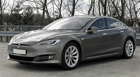 Tesla With Argan Tree