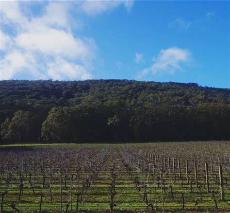 mount macedon winery visit macedon ranges
