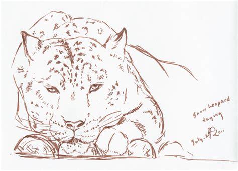 journey  art animal sketches
