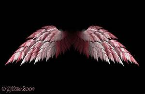 71, Angel, Wings, Wallpaper, On, Wallpapersafari