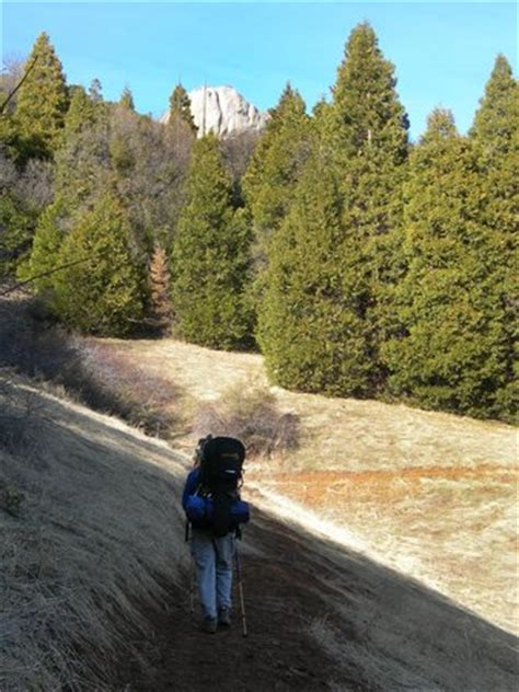 Hiking Up The Ladybug Trail  Picture Of Sequoia Outdoor