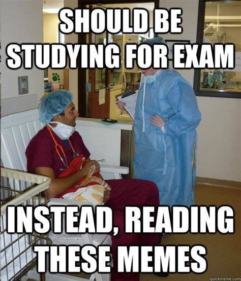 Studying Memes - should be studying for exam instead reading these memes overworked veterinary student quickmeme