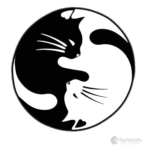 how to decorate interior of home two cats yin yang decal top pet gifts