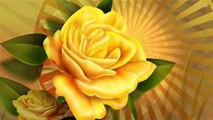 (5341) Yellow Rose HD Desktop Background Wallpaper ...