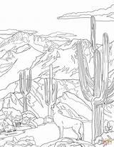 Coloring Coyote Howling National Mountain Saguaro Printable Symbols Florida State Drawing Arizona Road Hut Teton Zion sketch template