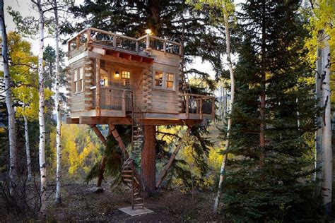Forever Young The 18 Greatest Tree Houses For Adults