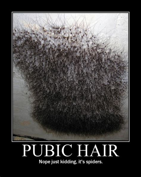 Pubic Hairstyles For With Photos by Pubic Hairstyles Hairstyle
