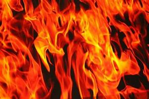 Image Gallery Real Flames