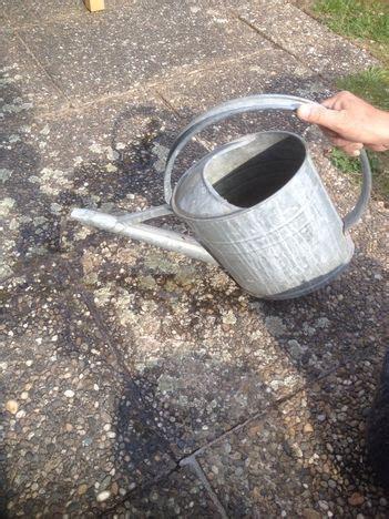 flechten entfernen soda waschsoda und brennnesselsud gegen flechten und unkr 228 uter