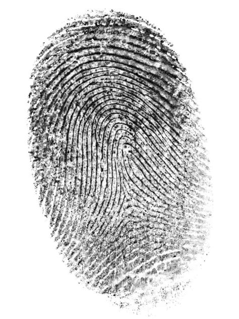 Was deine Fingerabdrücke über dich aussagen