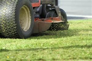 Mulchmesser Für Rasenmäher : mulchmesser f r rasenm her das sollten sie beachten ~ Orissabook.com Haus und Dekorationen