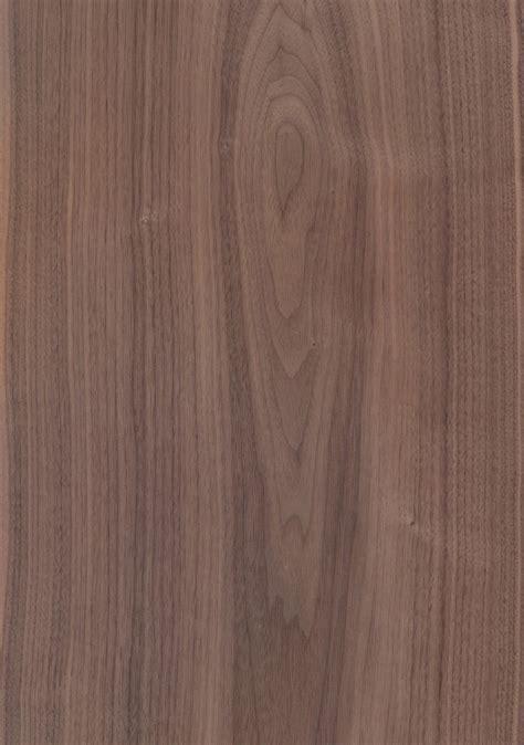 black walnut furnier schorn groh furniere veneers
