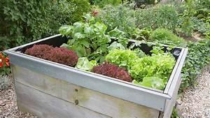 Hochbeet Im Garten : ein hochbeet anlegen und gem se pflanzen ~ Lizthompson.info Haus und Dekorationen