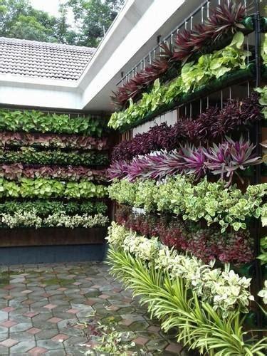 vertical garden  rs  square feet
