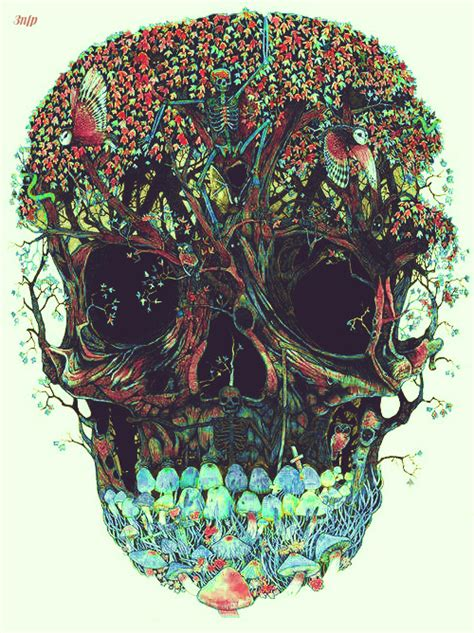 Illustration Art Edit Shrooms Myedit Skull Nature Skeleton