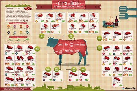 cuts of beef chart cuts of beef infographic food vale