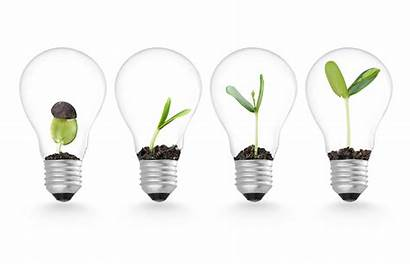 Innovation Growth Business