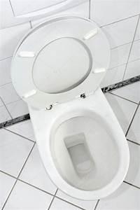 White toilet bowl with open lid — Stock Photo © pixpack ...