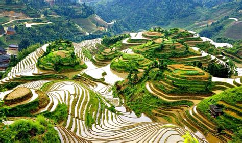 Longji terraced fields, Guilin, China - Awesome place! It