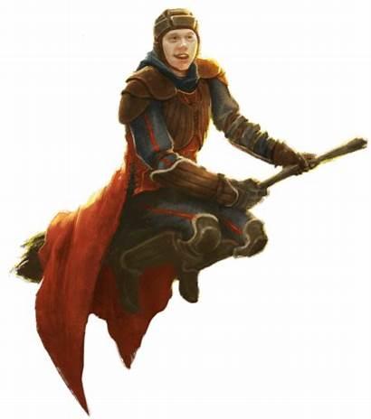 Ron Quidditch Keeper Weasley Snitch Golden Potter