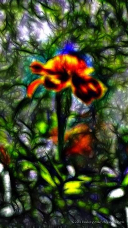 Gambar Cantik Itl Bunga Iphone Iris Teahub
