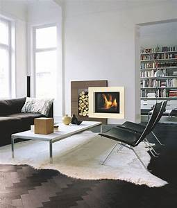 Cadre De Cheminée : chemin e insert foyer ferm design d corative c t maison ~ Melissatoandfro.com Idées de Décoration
