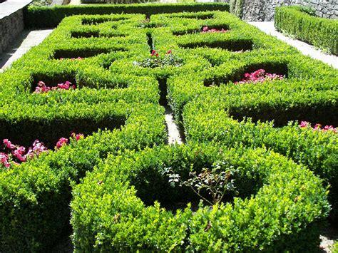 Gartengestaltung Mit Buchsbaum by Buchsbaum Heckenbeet