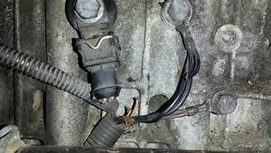 1996 850 Glt Knock Sensor  2 Wiring Harness