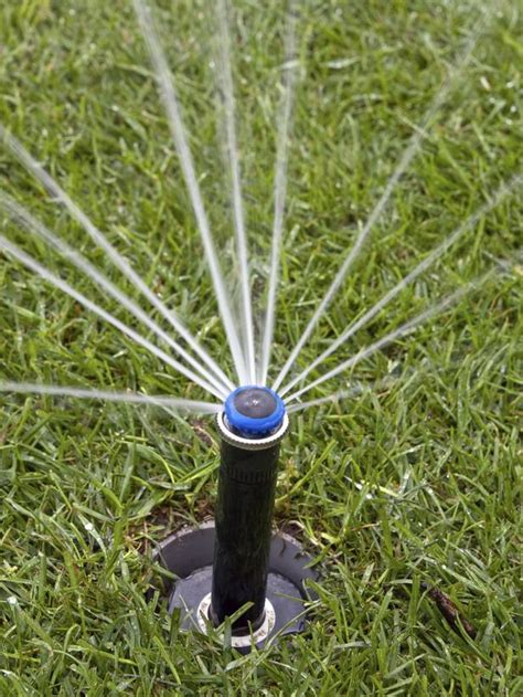 types of lawn sprinkler systems proper lawn watering t t landscaping