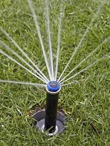 Proper Lawn Watering