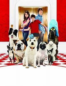 Hotel Pour Chien : hotel for dogs 2009 ~ Nature-et-papiers.com Idées de Décoration