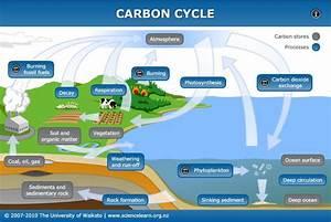 Humans Vs  Earth U2019s Climate  Preparing For Battle