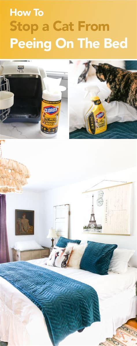 home decor images  pinterest home ideas