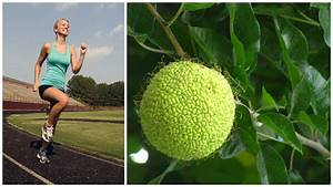 Адамово яблоко и гипертония