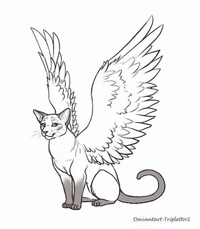 Cat Angel Cats Siamese Drawing Wings Coloring