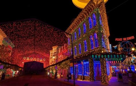 amazing christmas lights 70 pics picture 39