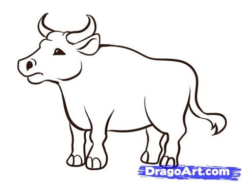 Pencil And In Color Ox Clipart Coloring